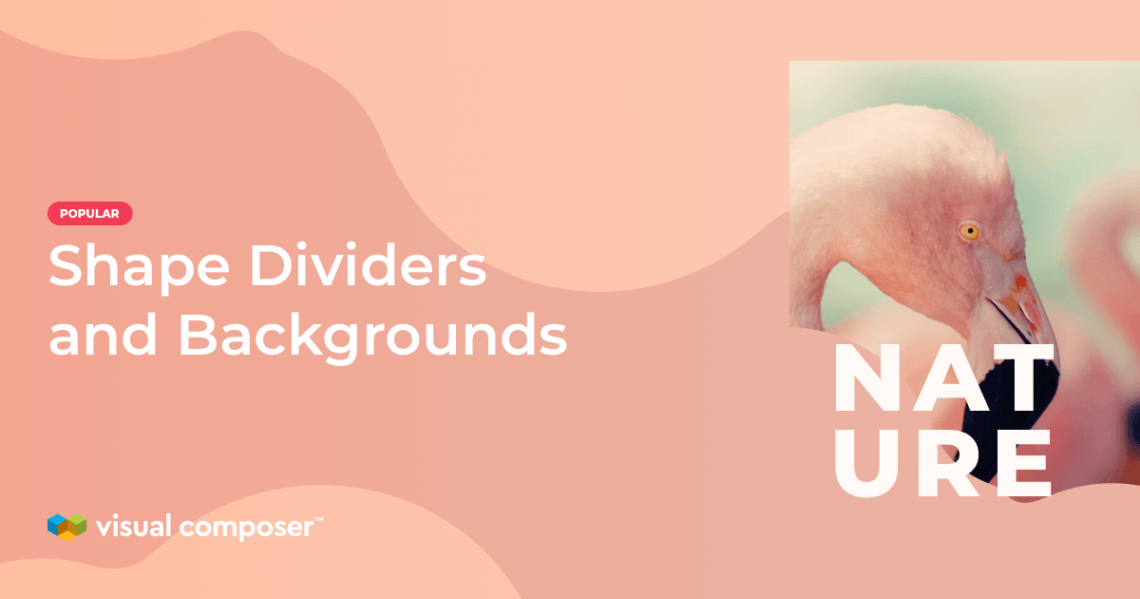 Shape divider feature for background with color, image, and video