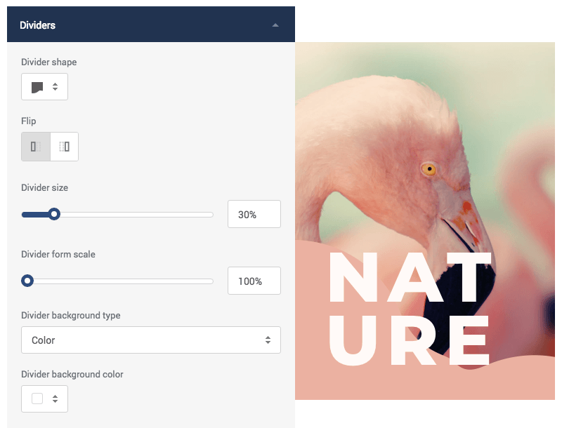 Add shape divider with color, gradient, image, or video to your background