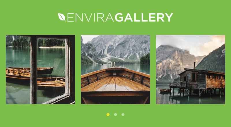 Envira Gallery example