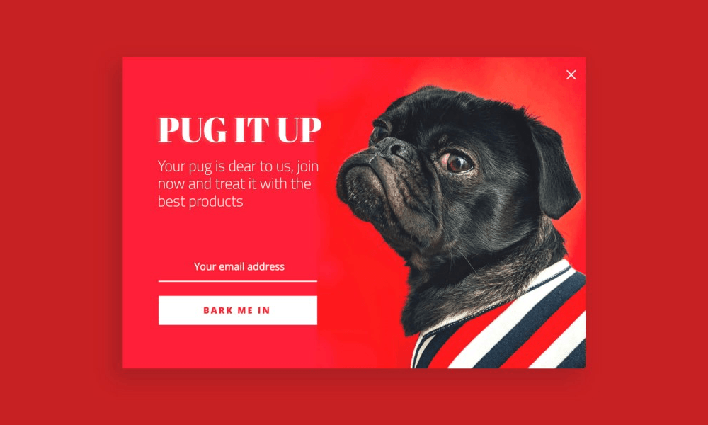 Popup pug