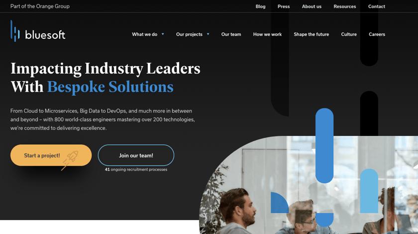 BlueSoft website