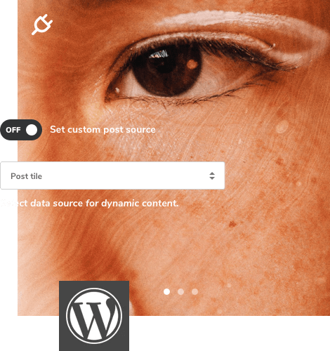 Dynamic content for WordPress